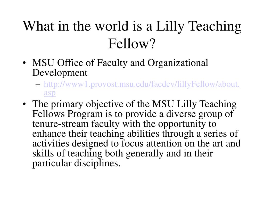 What in the world is a Lilly Teaching Fellow?