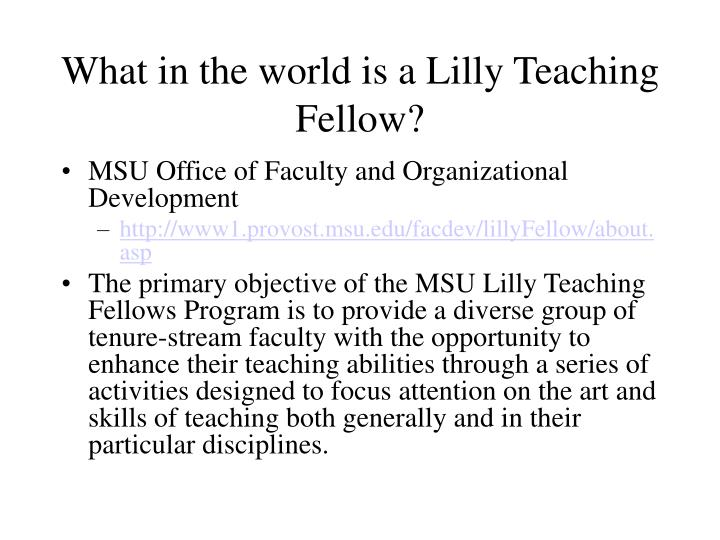 What in the world is a lilly teaching fellow