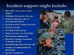 incident support might include