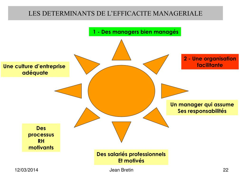 LES DETERMINANTS DE L'EFFICACITE MANAGERIALE