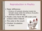 reproduction in poultry50