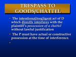 trespass to goods chattel