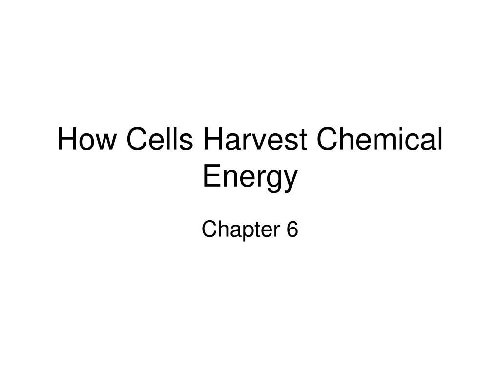 how cells harvest chemical energy l.