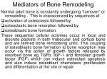 mediators of bone remodeling