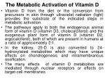 the metabolic activation of vitamin d