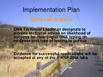 implementation plan8