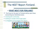 the neet report fenland19