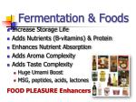 fermentation foods