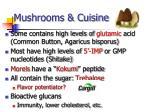 mushrooms cuisine