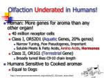 olfaction underated in humans