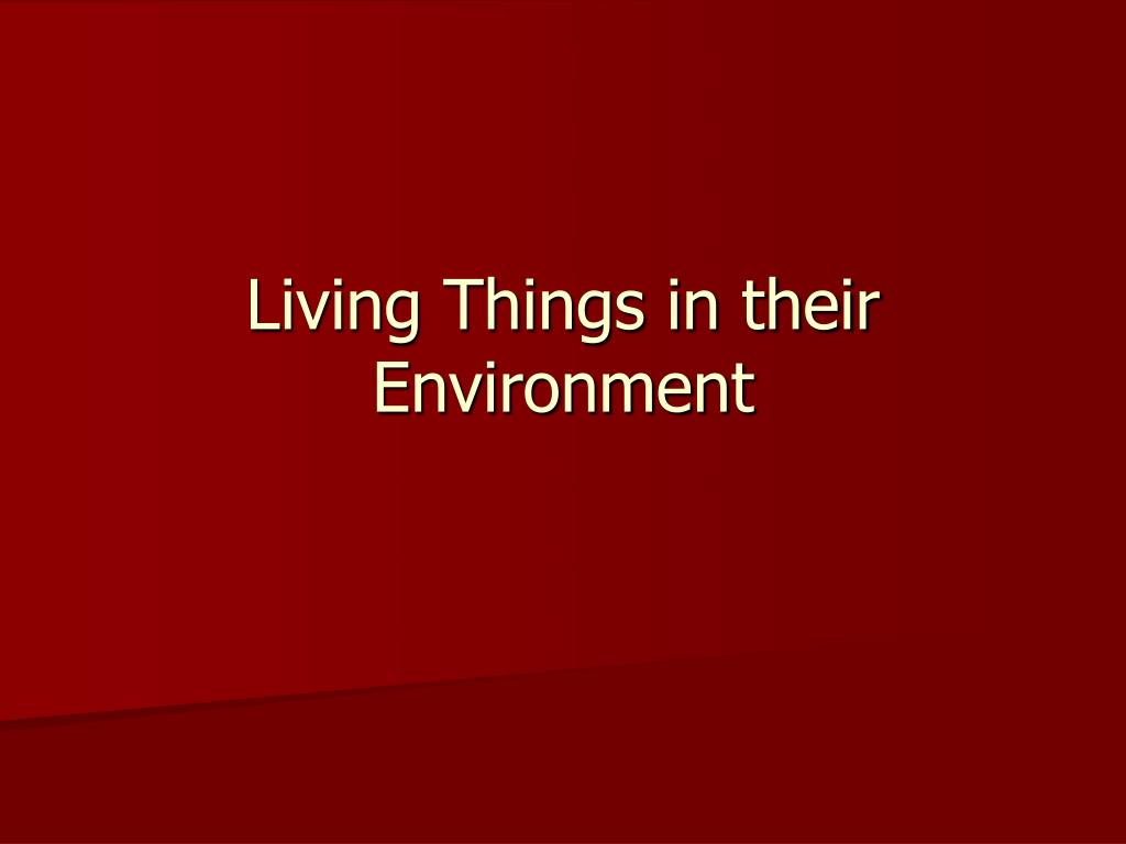 living things in their environment l.