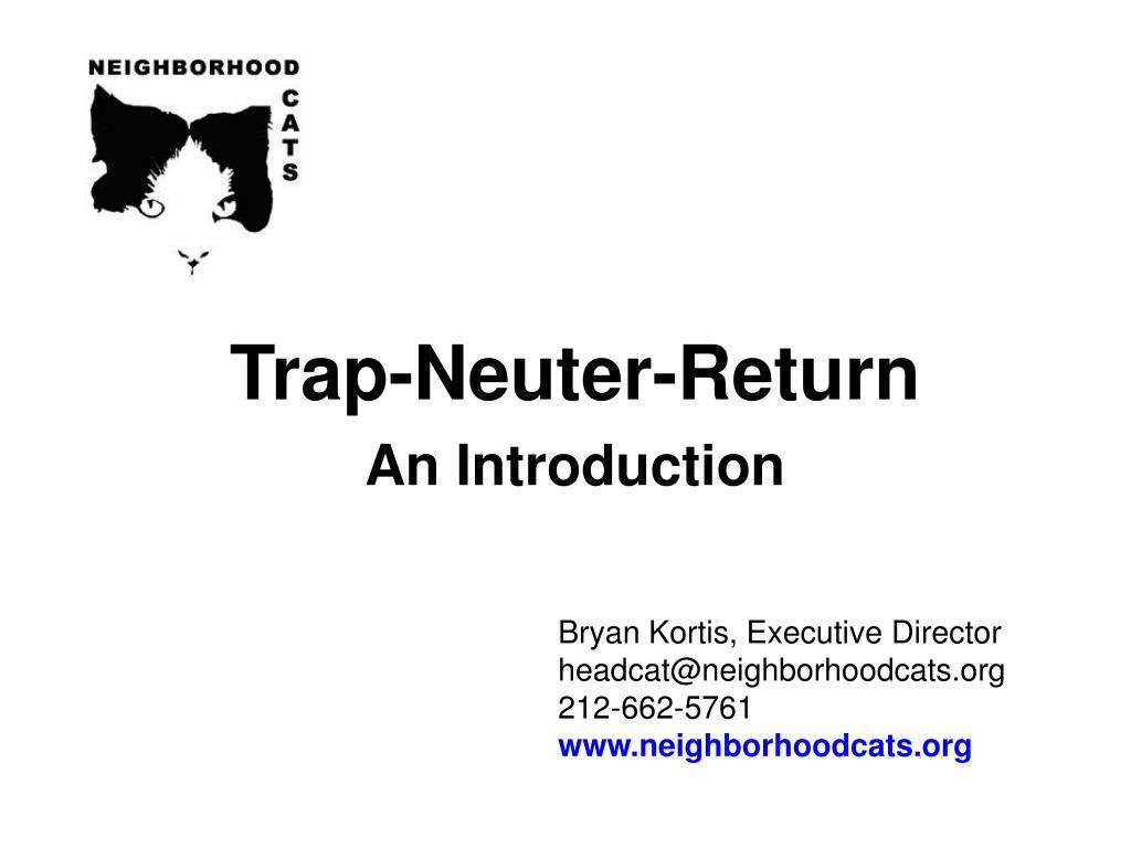 bryan kortis executive director headcat@neighborhoodcats org 212 662 5761 www neighborhoodcats org l.