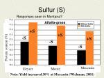 sulfur s