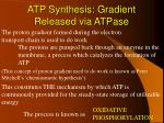 atp synthesis gradient released via atpase