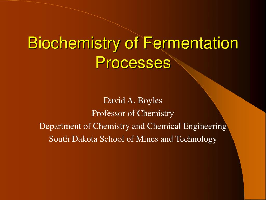 biochemistry of fermentation processes l.