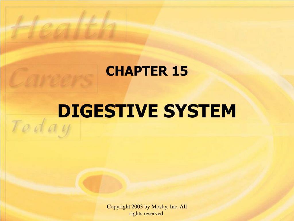 chapter 15 digestive system l.