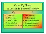 c 3 vs c 4 plants a lesson in photoefficiency