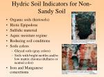 hydric soil indicators for non sandy soil
