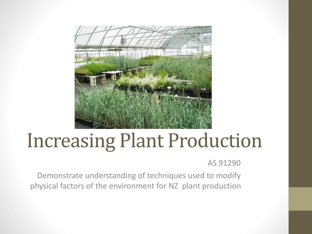 increasing plant production l.