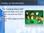 cooley on socialization