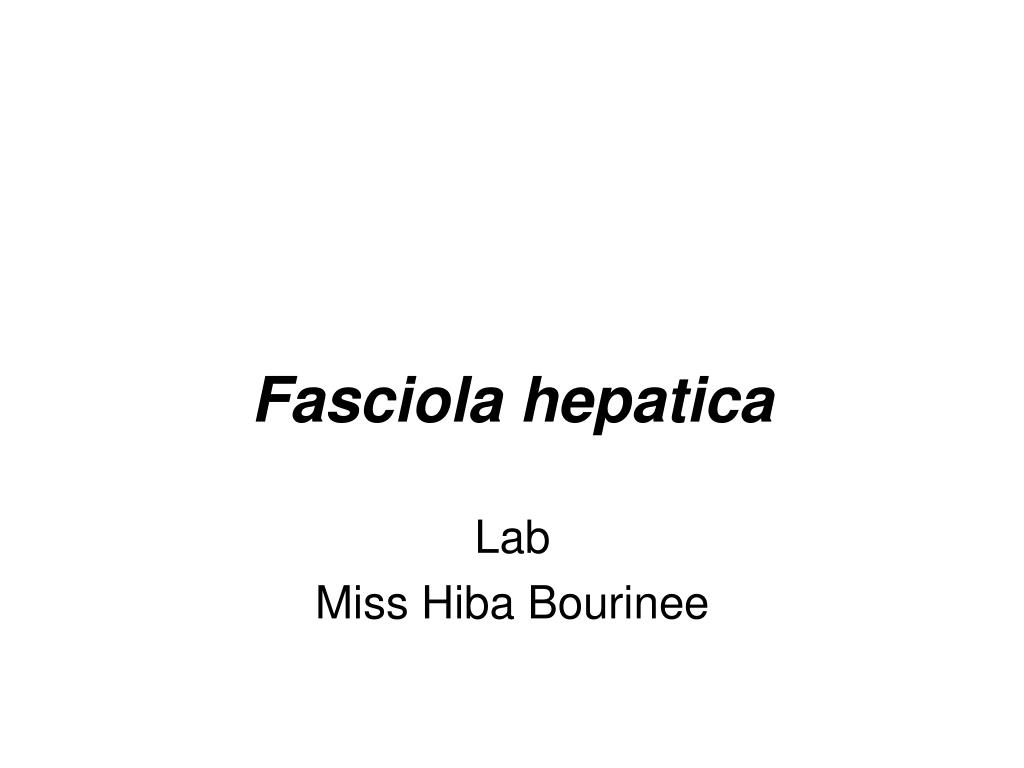 fasciola hepatica l.