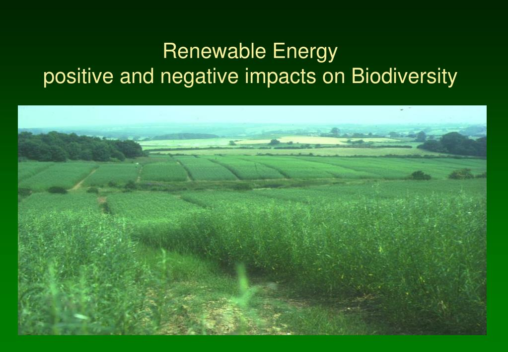 renewable energy positive and negative impacts on biodiversity l.