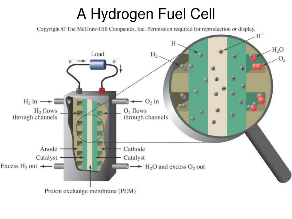 hydrogen fuel cell research paper Browse and read research research paper on fuel cell pdf on stem cells html 50 cartechdoe hydrogen fuel cells are fast emerging as an alternative green.