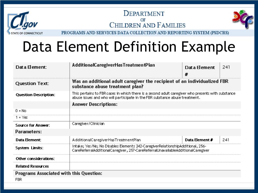 Data Element Definition Example