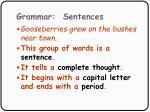 grammar sentences