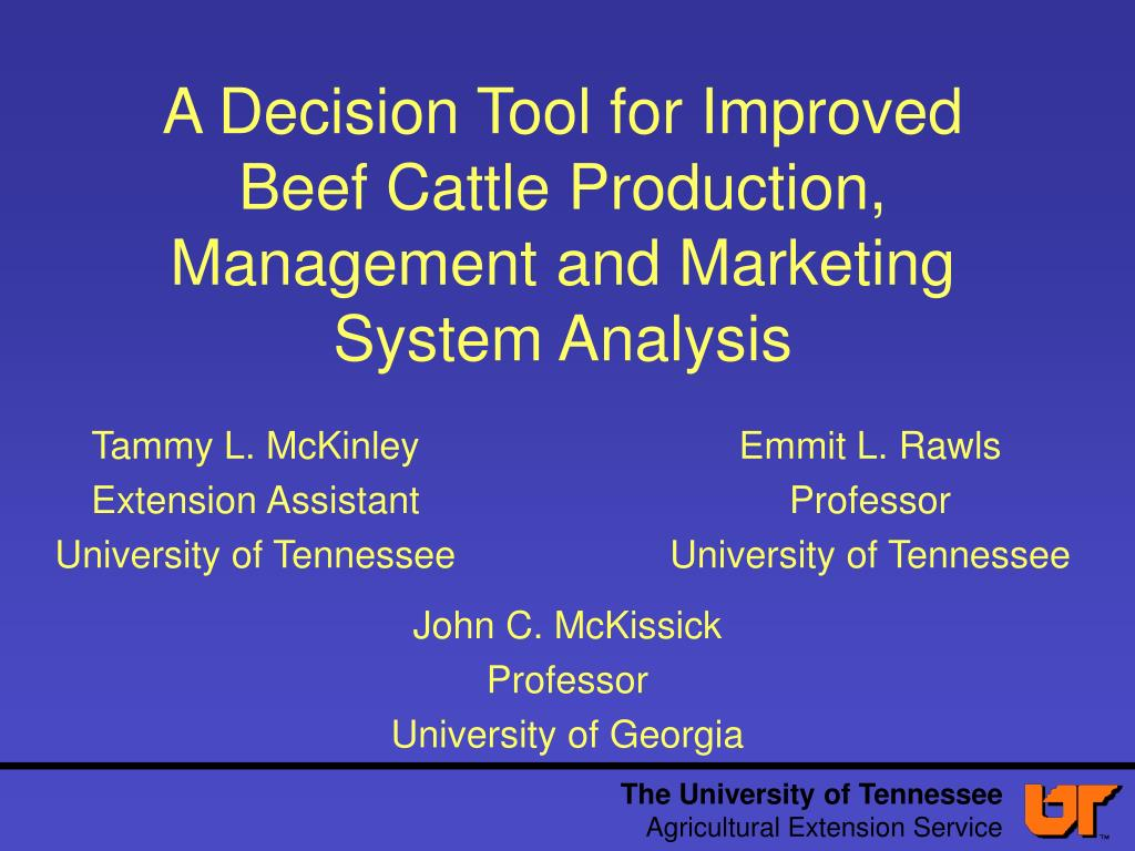 a decision tool for improved beef cattle production management and marketing system analysis l.