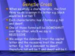 genetic cross