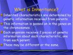 what is inheritance