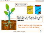 unit 6a fertilisers