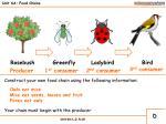 unit 6a food chains