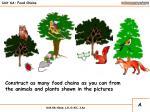 unit 6a food chains13