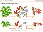 unit 6a interdependence