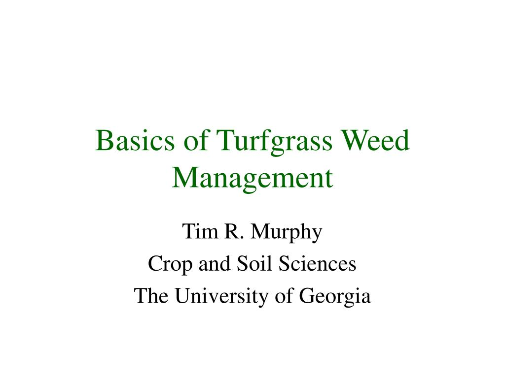 basics of turfgrass weed management l.