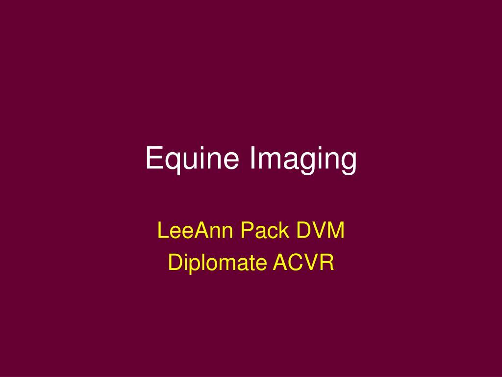 equine imaging l.