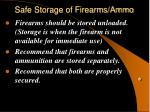 safe storage of firearms ammo
