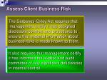 assess client business risk17