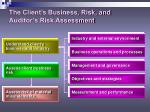 the client s business risk and auditor s risk assessment