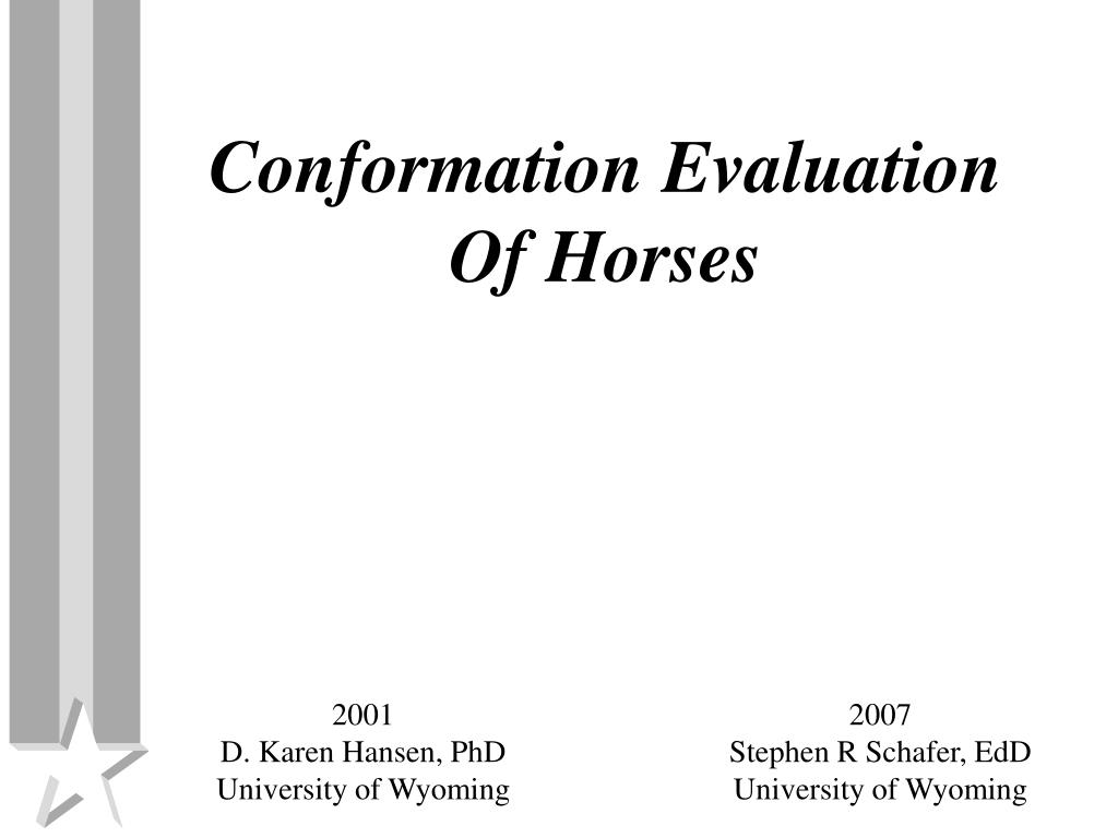 conformation evaluation of horses l.