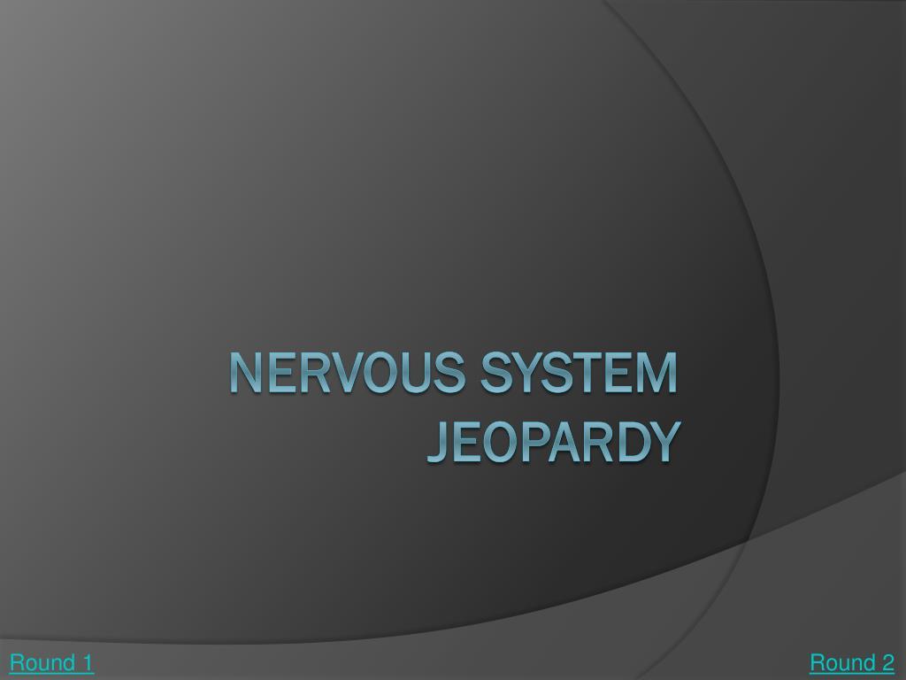 nervous system jeopardy l.