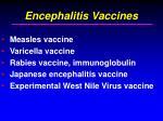 encephalitis vaccines