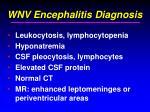wnv encephalitis diagnosis