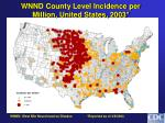 wnnd county level incidence per million united states 2003