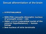 sexual diferentiation of the brain