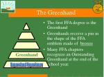 the greenhand