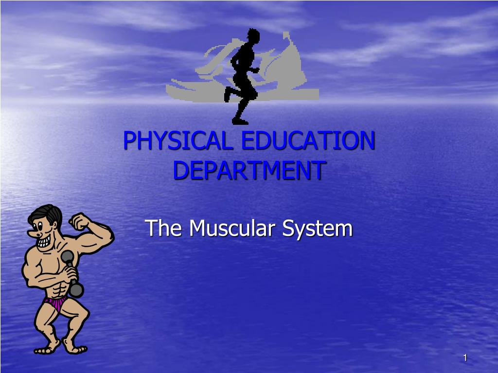 physical education department l.
