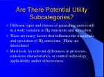 are there potential utility subcategories